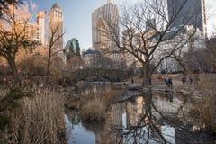 Puente de Gapstow en Central Park fotos de archivo