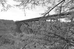 Puente de garganta de nuevo río (blanco y negro) Fotografía de archivo