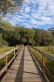 Puente de la caminata de la naturaleza Foto de archivo