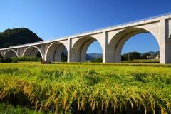 Puente de la carretera con el campo del arroz fotografía de archivo