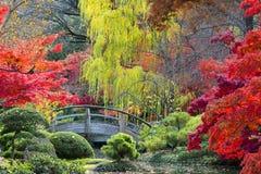 Puente de la luna en los jardines japoneses Imagen de archivo libre de regalías