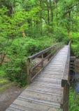 Puente de la montaña fotografía de archivo libre de regalías