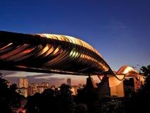 Puente de la onda del henderson de Singapur Foto de archivo libre de regalías