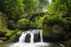 Puente de la piedra del rastro de Mullerthal Fotografía de archivo