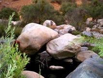 Puente de la roca en el bosque foto de archivo