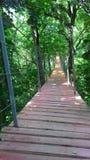 Puente de la suspensión Bridge Fotos de archivo