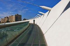 Puente de la suspensión Bridge foto de archivo
