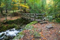 Puente de madera foto de archivo