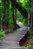 Puente de madera. Fotos de archivo libres de regalías