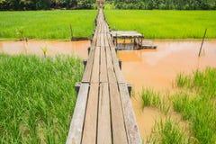 Puente de madera 100 años Fotografía de archivo