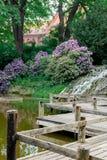 Puente de madera cerca del lago Fotos de archivo libres de regalías
