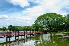 Puente de madera con el árbol grande Foto de archivo
