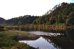 Puente de madera de la aldea de Zhangcun, Wuyuan Fotos de archivo libres de regalías