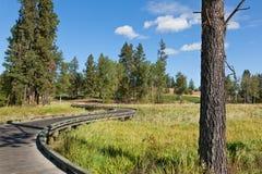 Puente de madera de la trayectoria del carro de golf Fotografía de archivo libre de regalías