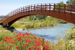 Puente de madera de las amapolas de las flores del río rojo del prado Imagen de archivo libre de regalías