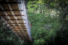 Puente de madera en bosque Foto de archivo