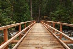 Puente de madera en el bosque Imágenes de archivo libres de regalías