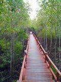 Puente de madera en el bosque Imagenes de archivo
