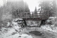 Puente de madera en el bosque Fotos de archivo