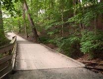Puente de madera en el bosque Fotografía de archivo