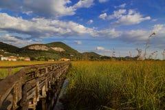 Puente de madera en el campo Fotografía de archivo libre de regalías