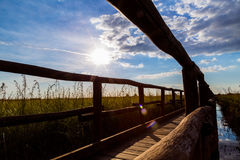 Puente de madera en el contraluz del campo Imagen de archivo libre de regalías