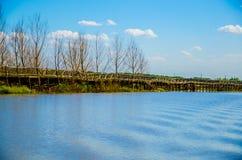 Puente de madera en el lago Imagen de archivo libre de regalías