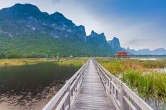 Puente de madera en el lago del loto Imagenes de archivo