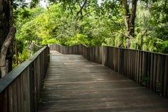 Puente de madera en el parque de Vachirabenjatas foto de archivo libre de regalías