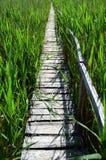 Puente de madera en el Sic Imagenes de archivo