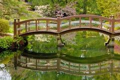 Puente de madera en jardín japonés Fotografía de archivo
