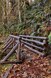 Puente de madera en sendero Imagen de archivo libre de regalías