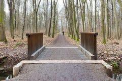 Puente de madera en un bosque imagenes de archivo
