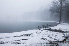 Puente de madera en un lago del invierno Fotos de archivo libres de regalías