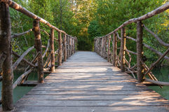 Puente de madera en un parque Fotos de archivo