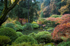 Puente de madera, jardín japonés Foto de archivo