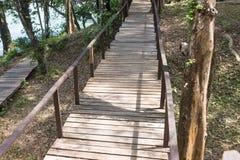 Puente de madera a lo largo del bosque Fotos de archivo
