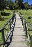 puente de madera que cruza en un parque extenso rodeado por naturaleza Concepto de la comida campestre Imagen de archivo libre de regalías