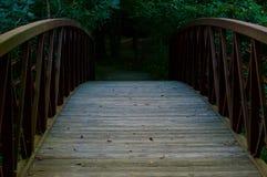 Puente de madera que lleva en la madera Fotos de archivo