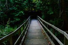 Puente de madera que lleva en la madera Imagen de archivo