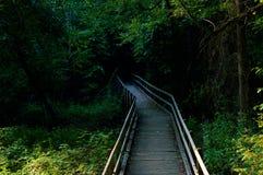 Puente de madera que lleva en la madera Foto de archivo libre de regalías