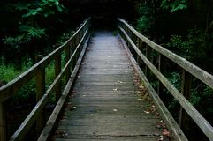 Puente de madera que lleva en la madera Imagenes de archivo