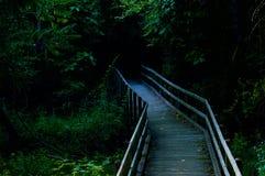 Puente de madera que lleva en la madera Foto de archivo