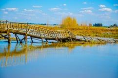 Puente de madera quebrado en el lago Fotografía de archivo