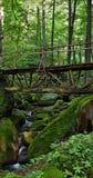Puente de madera sobre corriente salvaje imagen de archivo libre de regalías
