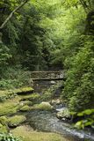 Puente de madera sobre el río Foto de archivo