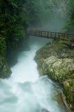 Puente de madera sobre el río salvaje Imagen de archivo libre de regalías