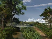 Puente de madera viejo Fotografía de archivo libre de regalías