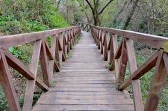 Puente de madera viejo en el bosque, en las montañas Imagen de archivo libre de regalías