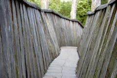 Puente de madera viejo en el medio de un bosque Fotografía de archivo libre de regalías